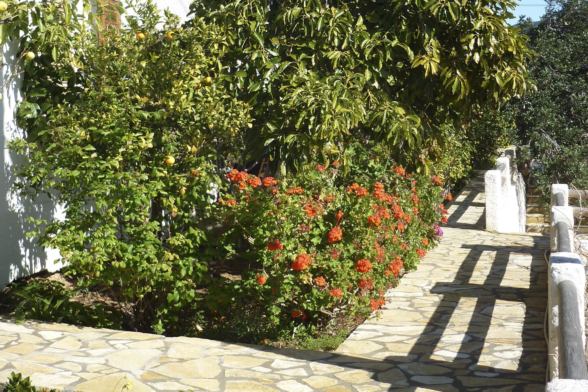 Kreta Winter Hotel 2